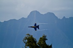 Over a tree and infront of a mountain. (Stephen Ball Photography) Tags: ball photography photo shot photos top unique great best stephen explore prize f18 blueangels premier digitalphotography stephenball kaneohebayairshow stephenballphotography
