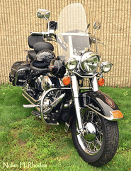 The word softail is a registered trademark of Harley-Davidson motorcycles. At Babes And Bike Show Unique Photo Fairlawn NJ. (nrhodesphotos(the_eye_of_the_moment)) Tags: show art classic glass grass leather metal wall reflections lights rivets shadows suspension display seat spokes wheels helmet mirrors rubber tires plastic ridge chrome transportation harleydavidson motorcycle rims trademark softail globes fueltank brakelights reflectors shockabsorbers carburators treads uniquephotos nrhodesphotosyahoocom wwwflickrcomphotostheeyeofthemoment healdlights dsc1041nhr