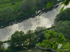 Die Saar bei Wiltingen (2012-05-24 -24) (Cary Greisch) Tags: germany rivire deu saar rheinlandpfalz galgenberg wiltingen carygreisch