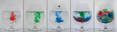 color metamorphosis in the liquid (Elisa.95) Tags: life blue red white color macro green ice water glass creativity still details transparency forms liquids shape metamorphosis