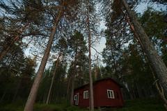 Mkki (Samuel Raison) Tags: finlande finland mkki mkkilife nature solitude calm faraway loin lointain tranquillit nikon nikond3 nikon41635mmafsgvr