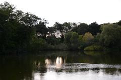 (lipsofcrimson) Tags: sunset dusk toronto highpark night pond lake