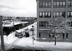from queens to manhattan (-{ ThusOriginal }-) Tags: bw blackandwhite building car city dig digital grd3 grdiii monochrome newyork nyc people queens ricoh snow street thusihaveseen tree winter thusoriginal