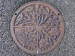 Kurate Fukuoka, manhole cover (福岡県鞍手町のマンホール) (MRSY) Tags: kurate fukuoka japan manhole flower ユリ キク スイセン
