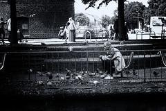 der alte Mann und die Tauben (SmoHoHo) Tags: portrait mann kippe taube gelnder holstentor schwarzweis sonya58 sal1650