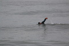 IMG_0199 (Yorkshire Pics) Tags: 1009 10092016 september scarborough northyorkshire eastcoast yorkshirecoast swimming swimmer seaswimming people