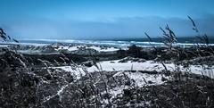 Sand or Snow?  (Explored) (Katrina Wright) Tags: florence or oregon dsc1755 sand snow beach hecetabeach usa dunes wild rachten