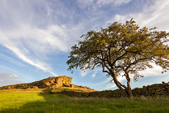 Almsliffe Crag (matrobinsonphoto) Tags: landscape sunset sunlight golden hour outdoors view beautiful scenery britain great british uk harrogate wharfedale rock rocky outcrop almscliffe crag tree lone wall countryside rural