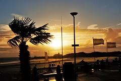 Tropisch Vlissingen (Omroep Zeeland) Tags: boulevard vlissingen ondergaandezon natuur zeeland tropischweer zomer warm walcheren