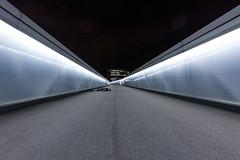 FDT #7 (EOS.5Dan) Tags: genve geneva scheron gare station passerelle pont 5dmarkii canon15mmf28 facedown tuesday suisse switzerland night nuit lumire light