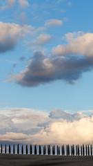 Skyward (Steve_Mallett) Tags: landscape sanquirico sunset travel trees clouds cypresstrees