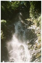 Pahuma 2 (Patrick J. Negwer) Tags: ecuador pichincha pintag pahuma reserva cascada rio agua verde sol cielo perro perros gusano plantas naturaleza