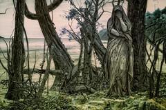 Sadness (Rites Of Winter) Tags: gothic fantasy dark darkart sadness statue forest sea landscape goth photomanipulation