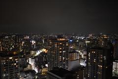 Views over Yokohama (Oliver MK) Tags: view views over yokohama marine tower cityscape night nighttime nightscape city asia japan tokyo lights travel traveller nikon d5500 heights urban architecture skyline buildings