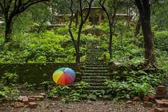 Matheran-5401 (Satish Chelluri) Tags: satishchelluri satishchelluriphotography matheran maharastra umbrella mansoon