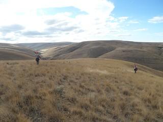 Oregon Luxury Upland Hunting 14