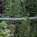 Capilano Suspension Bridge_2