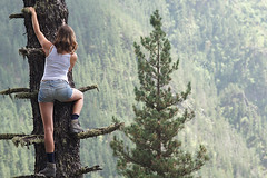 Climbing a tree in Tusheti, Georgia (Simon Christiaanse) Tags: summer woman holiday mountains tree nature girl pine forest georgia dof legs adventure climbing caucasus fir shorts sakartvelo tusheti  omalo trekkingshoes   simonchristiaanse