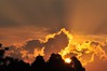 ♥‿♥ -  holding on... (Ruby Ferreira ®) Tags: trees silhouettes árvores silhuetas notreatment pôrdosolsunset brasilemimagens viaanchietasp