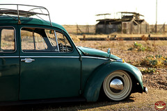Java & Flash (Aircooledbenny - SC Automotive Photography) Tags: light sun white house green classic look station vw club canon vintage bug volkswagen photography boot 1 coast java early wooden weeds rat long surf power path board south flash low beetle hippy railway automotive dirty rack skate type 5d hazzard dungeness trim rider lowered 1965 slammed dumped mkiii vzi hoodride ausi slamwerks stancing