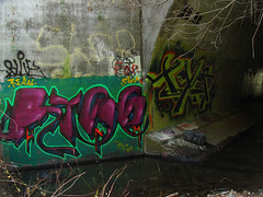 Rise Texer (Slum Dawg Millionaire) Tags: graffiti sacramento rise creeps hnr texer
