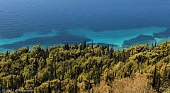 Blue Earth (Otd 7 // Photography) Tags: blue trees sea sky mer tree nature water eau earth croatia bleu terre croatie cypres orebic