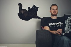 Goodbye Gravity IV (Rick Nunn) Tags: pet me cat beard hilarious eyes funny comedy rick livingroom couch sofa gravity meow goodbye nunn macbook canonef28mmf18usm anyforty