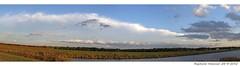 oostvaardersdijk (raymondklaassen) Tags: panorama stitch flevoland almere oostvaardersdijk