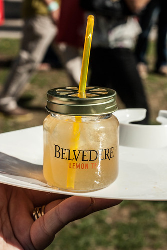 chicago gourmet 2012-27.jpg