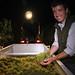 2012 Cal Plans Woods Chardonnay Harvest 0019