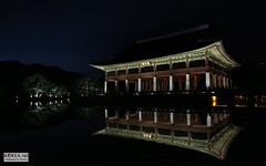 Gyeongbokgung_Night_08logo (KOREA.NET - Official page of the Republic of Korea) Tags: trip travel tourism water night canon photography tour village palace seoul southkorea  suwon     south republic          korea  rpublique poblacht         nightphotographygyeongbokgungkorea