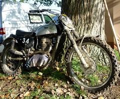 Moto Cross de Beauval en Caux Octobre 2010 BSA (barbeenzinc) Tags: british bsa ccm b44 anglaise b50 monocylindre unitsingle