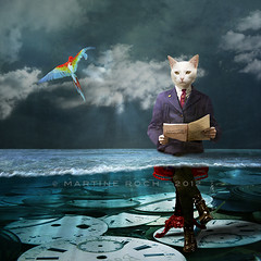 Everything is a matter of time (Martine Roch) Tags: sky bird clock water animal cat square kitten underwater reader time dream photomontage imagination dreamlike ara martineroch àlarecherchedutempsperdu flypapertextures