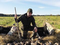 Geese Hunting
