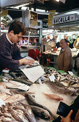 VENTA DE PESCADO EN EL MERCADO DE LA BOQUERIA (Manel Armengol C.) Tags: barcelona españa spain pescado 90s cataluña venda comercio mercatdelaboqueria alimentacion peix mercadodelaboqueria mercatdesantjosep alimentació peixateria comerç barcelonacatalunya mercadodesanjosé ventadepescado mercatmunicipal pescateria