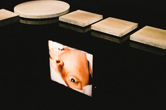 MONA (pablo.sutton) Tags: man reflection eye water face concrete teeth mona photograph steppingstones hobart andresserrano nikond3200 travelphotography themorguebloodtransfusionresultinginaids
