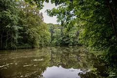 Diest 300716 05 (David Vanthienen) Tags: walk natu hike walking city stad diest hiking wandelen wandeling dieststadcitywandelingwandelenhikinghikewalkingwalknatuurnaturecitadelhalvemaandemerecocenterwarandebegijnhofbeguinage