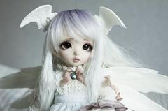 An angel's postcard (~Akara~) Tags: bjd abjd ball jointed doll fairyland fairy land fl ns normal skin littlefee little fee ltf luna mod modded open eyes eye sleeping faceplate custom faceup face up
