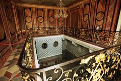 Castello Nymphenburg: interni del Badenburg (falco di luna) Tags: monacodibaviera monaco baviera castellodinymphenburg schlossnymphenburg castello nymphenburg badenburg