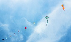 339/365 In diagonale (darioseventy) Tags: aquiloni kites cielo sky clouds nuvole bluesky blu blue summertime summer estate fly volare leggero light minimal minimalismo minimalism diagonale diagonal