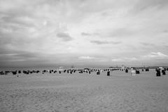 (Feininger's Cat (Thanks for over 400000 views!)) Tags: blackandwhite leica leicaxvario 28mmffequiv landscape ostsee warnemnde sky sea balticsea beach