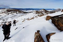 20160807-26-Rodway Range bouder Field completely filled with snow (Roger T Wong) Tags: australia mtfield mtfieldnationalpark np nationalpark rodwayrange sel1635z sony1635 sonya7ii sonyalpha7ii sonyfe1635mmf4zaosscarlzeissvariotessart sonyilce7m2 tasmania bushwalk hike outdoors snow tramp trek walk winter