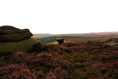 Let's drink, to the hard working people (Andrew 62) Tags: saltcellar gritstone derwentedge landscape heather