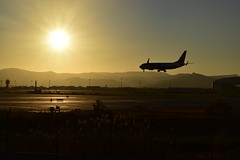 Aterrizando al atardecer (@syllicon) Tags: avion aterrizaje nikond5500 atardecer contraluz silueta aeropuerto bcn elprat