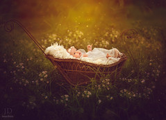 My Faerie Baby ({jessica drossin}) Tags: jessicadrossin baby overlay