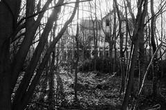 Engelsesteenweg, Doel, OVL (Jickatrap) Tags: pentaxmz50 pentax 35mm  analog film filmphotography  bwfilm  ilforddelta delta400      photographersontumblr newtopographics  doel