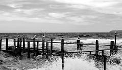 Erfrischung (Wunderlich, Olga) Tags: wasser wellen schwarz weis holz mwen meer ostsee natur naturfoto naturphotography deutschland mecklenburgvorpommern inselrgen vorpommern insel rgen naturfotografie wolken himmel wolkenhimmel