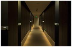 Shanghai 02 (misu_1975) Tags: shanghai china hotel hallway digital leica leicam mp m240 summicron summicronm 50mm f2 thepulihotel