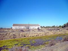 Na Ria (sacipere) Tags: tavira portugal riaformosa