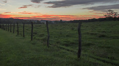 Sunset on a Cattle Ranch Near Bernadotte (SteveFrazierPhotography.com) Tags: bernadotte fultoncounty illinois il sunset countryside farmland farming fields evening sundown clouds sky barbedwire fence posts hills hillside grass grassland trees mist fog beautiful landscape scene scenery stevefrazierphotography canoneos60d september 2016 twilight fulton spoonriver